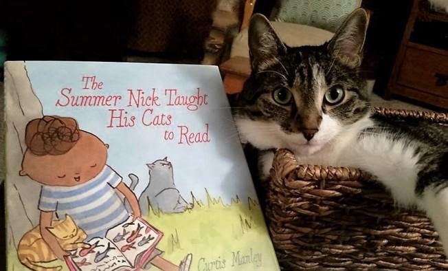 cat book 2 (2)