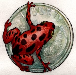 frog on a dime color RED 1a