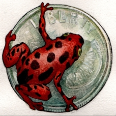 cropped-frog-on-a-dime-color-red-1a